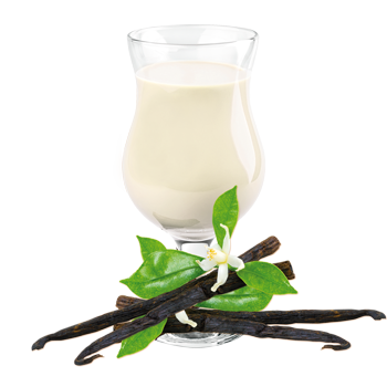 Ideal Complete - Vanilla Drink Mix (Meal Replacement)